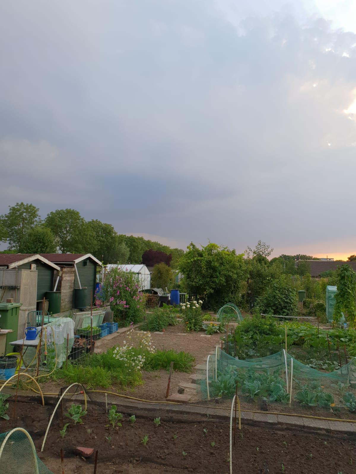 aanleg en onderhoud tuinen