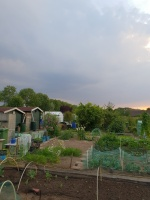 aanleg-en-onderhoud-tuinen.jpg